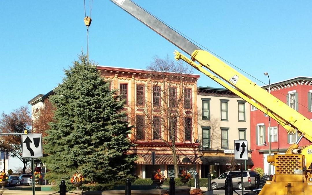 Chambersburg Christmas Tree