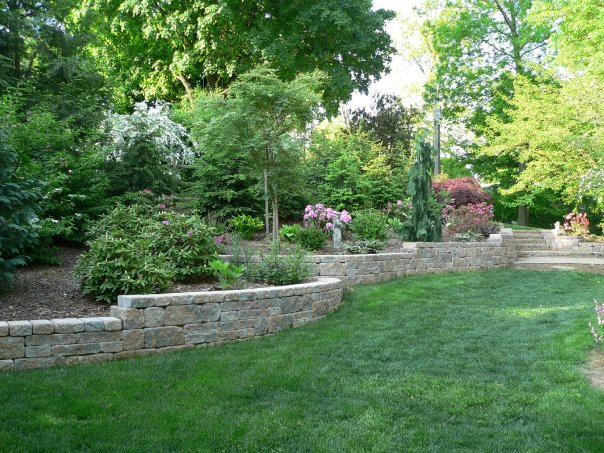 The Difference between Arboriculture and Horticulture