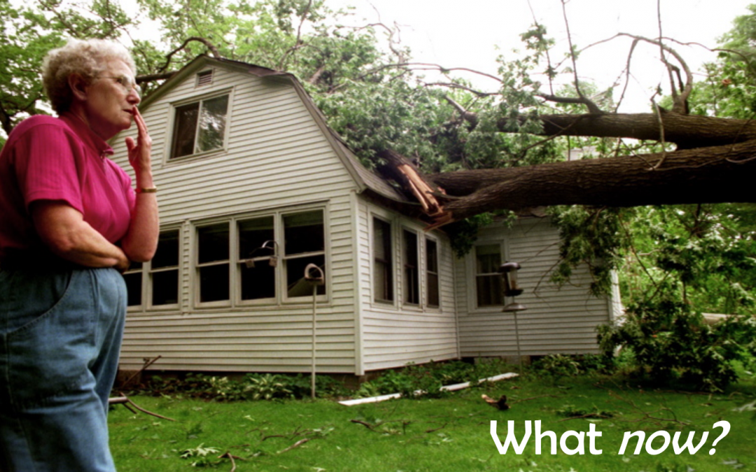 Help! A Tree Just Fell on My House!