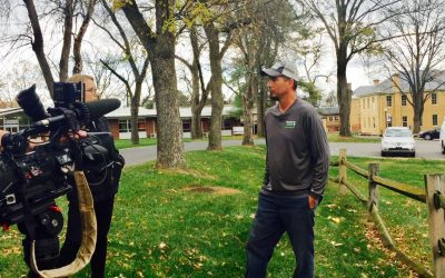 Tree Appraisals: The Value of a Tree