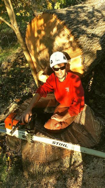 Evan Brumfield: Maryland Licensed Tree Expert
